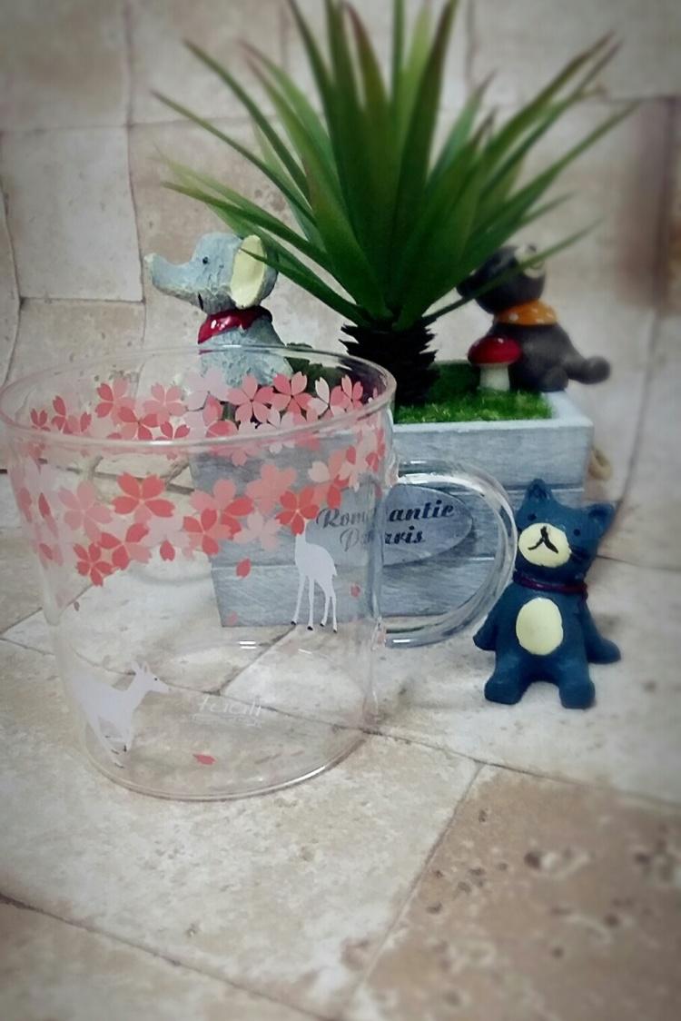 和风樱花系列小清新文艺范日系高硼玻璃杯